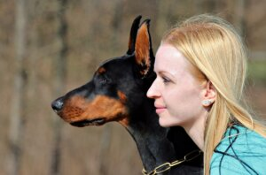 「犬のトレーニング」トレーニングを始める前に、まず現状の飼育方を確認してみましょう
